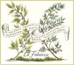 logo_la_fidanza-oro